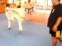Some kumite training with Ted Grankvist and Shihan Hasegawa
