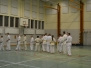Sweden Kyokushin winter camp 2013 day 1